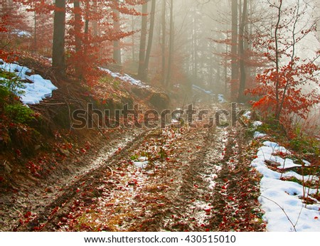 Dirty foggy road in the forest at sunrise. Carpathians mountains - stock photo