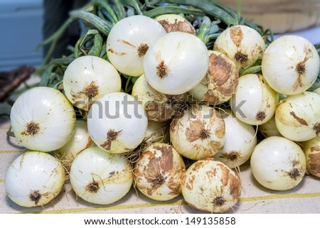 Dirty onions on a table - stock photo