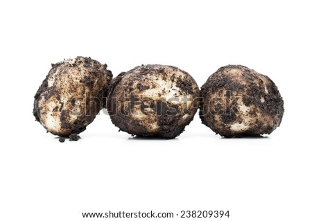 dirty potatoes - stock photo