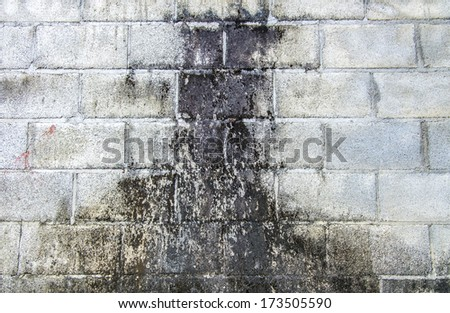 Dirty white wall parttern