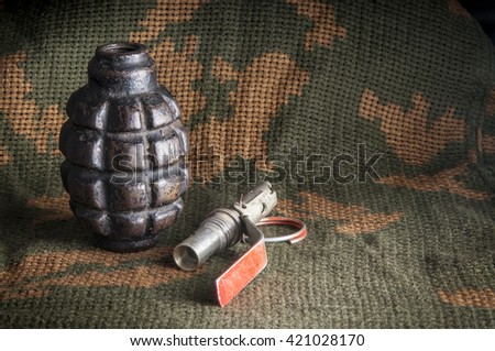 Disassembled fragmentation grenade on camouflage clothing - stock photo