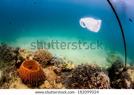 Discarded plastic bag drifts over a tropical coral reef causing a hazard to marine life such as turtles - stock photo