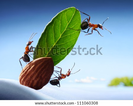 discovery, crew of ants sight land onboard almond yacht - stock photo