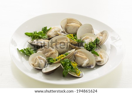 Dish of clams, steamed - stock photo