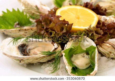 Dish of fresh oysters and shell seafood menu  - stock photo