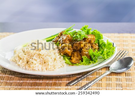 Dish of rice and fried grouper in black pepper sauce - stock photo