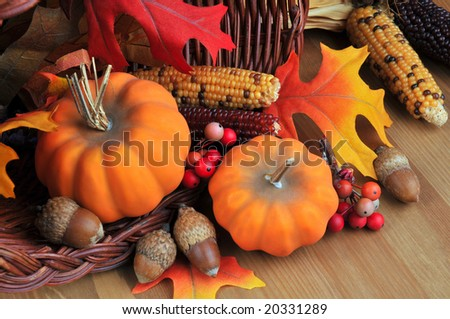 Display of autumn pumpkins indian corn acorns and leaves on wood table