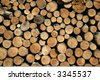 display of brown cut wood - stock photo