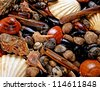Display of shellfish - stock photo