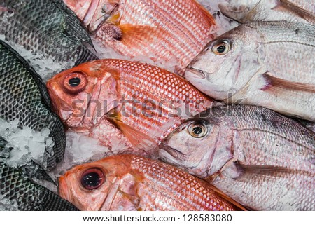 Display red snapper and tilapia on ice for sale - stock photo