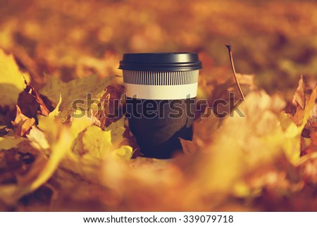 disposable coffee cup on yellow leaves - stock photo