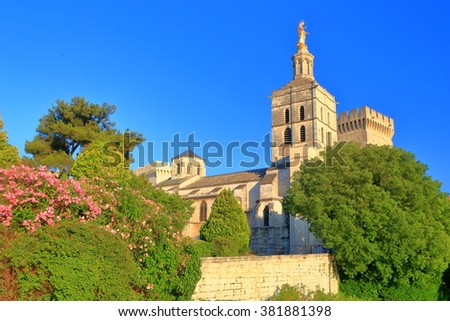 Distant buildings of the Cathedral Papal Palace (Palais des Papes) surrounded by gardens, Avignon, Provence, France - stock photo