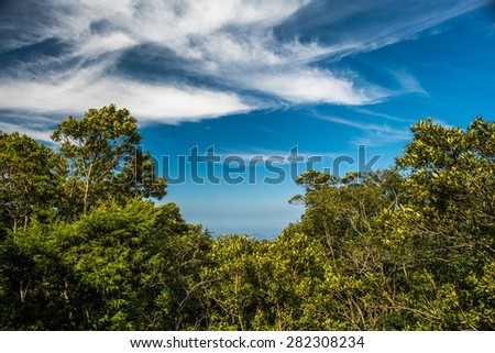 Distant city behind a forest with a blue sky and white clouds - stock photo