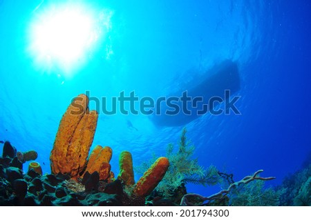 Dive Boat with Sunspot, Grand Cayman - stock photo