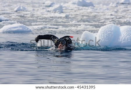 Diver among the ice