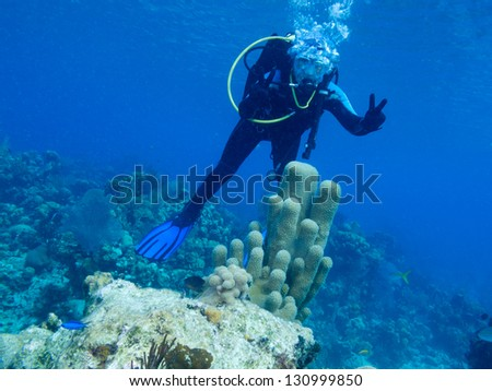 diver and corrals - stock photo