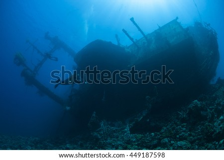 Diver and the Cedar Pride wreck.