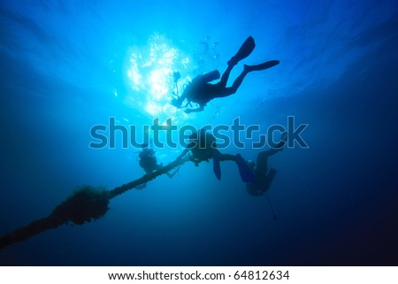 Diver ascend up to sea surface