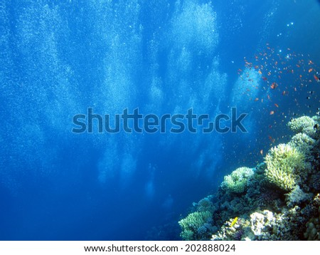 Diver bubbles from depth to shallows at the Blue Hole, Dahab - stock photo