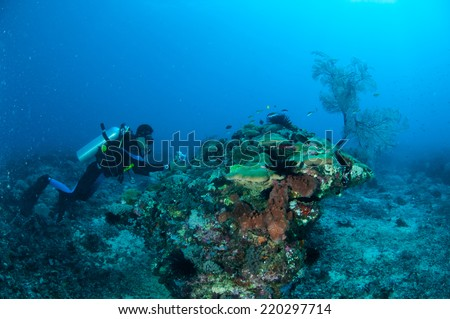 Diver is swimming and taking picture in Gili, Lombok, Nusa Tenggara Barat, Indonesia underwater photo. there is also sea fan.
