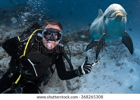 diver making a selfie with a dolphin underwater on deep blue sea background looking at you - stock photo