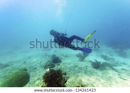 Diver put the signal tube