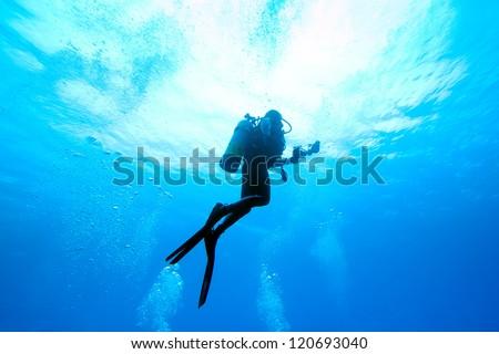 Diver rising - stock photo