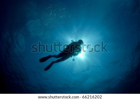 diver silhouette in clear blue water - stock photo
