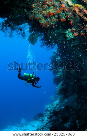 Diver swimming around in Banda, Indonesia underwater photo. There are sponge, reef fishes, sea fan.