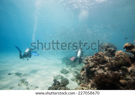diver swimming in fish school in Dimakya island, Palawan, Philippines. - stock photo