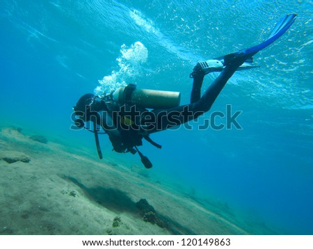 diver - underwater diving tropical sea