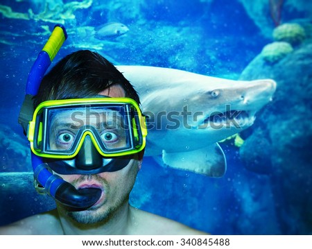 Diver with shark in background - stock photo