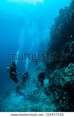 Divers and the meno wall in Gili, Lombok, Nusa Tenggara Barat, Indonesia underwater photo. There are some hard coral reefs.