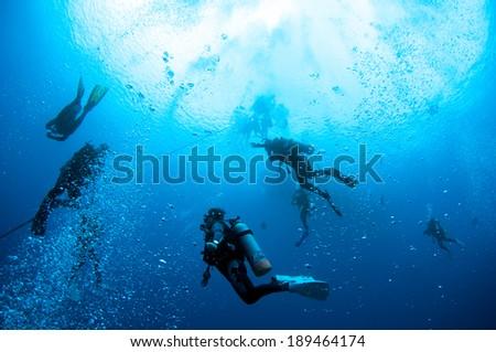 Divers descending on a descent line. - stock photo