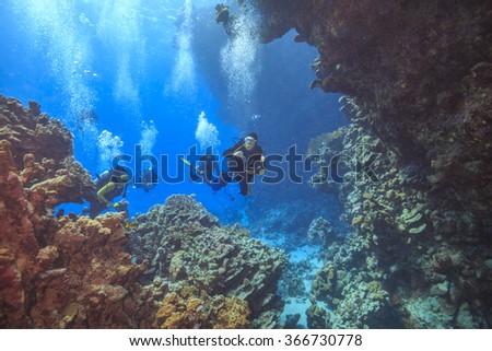 Divers explore cave's - stock photo