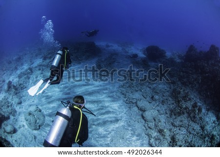 Divers exploring a sandy dive site