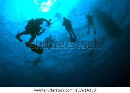 Divers in the blue