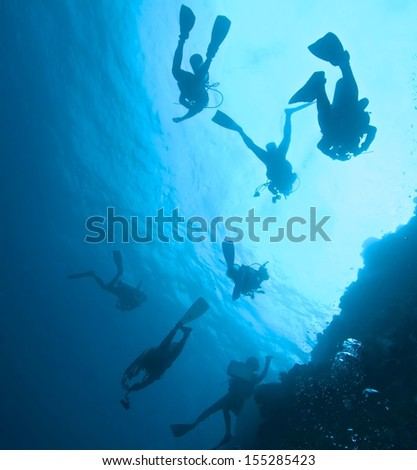 Divers in the ocean for safety stop.
