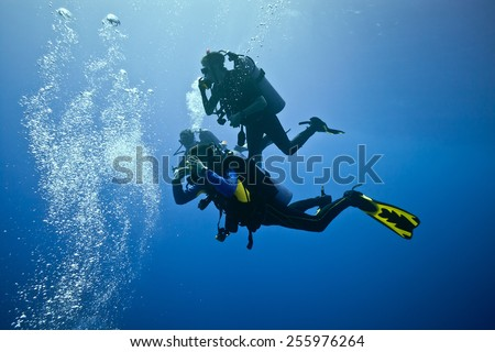 Divers on the blue background - stock photo
