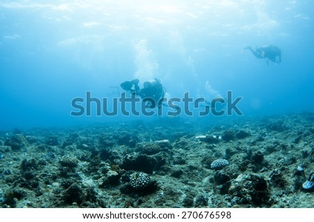 Divers underwater. - stock photo