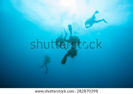 Divers underwater - stock photo
