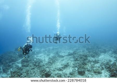 Divers underwater, Palawan. - stock photo