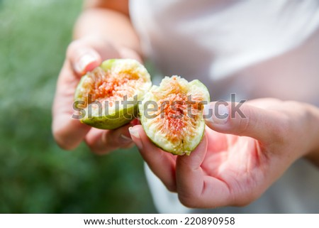 Divided fresh organic figs from the tree - stock photo