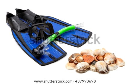 Diving equipment and seashells isolated on white background - stock photo
