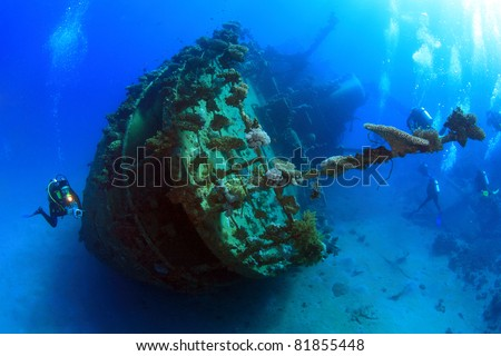 Diving in the Red Sea - stock photo