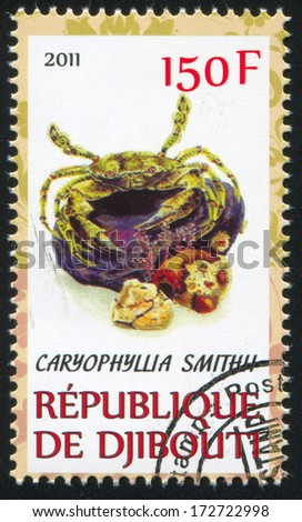 DJIBOUTI - CIRCA 2011: stamp printed by Djibouti, shows Caryophyllia, circa 2011 - stock photo