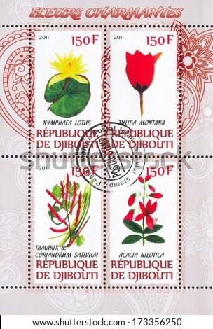 DJIBOUTI - CIRCA 2011: stamp printed by Djibouti, shows flower, circa 2011 - stock photo