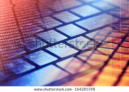 DNA data and computer keyboard - stock photo