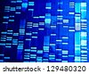 DNA fingerprint data on a paper. Macro image. - stock photo
