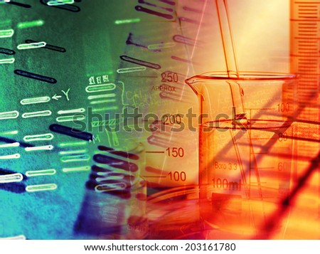dna fingerprinting research paper